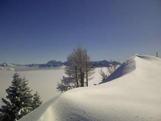 SC-Abend-Skitour